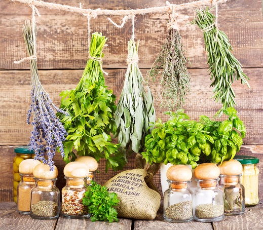 various fresh and dried herbs on wooden background